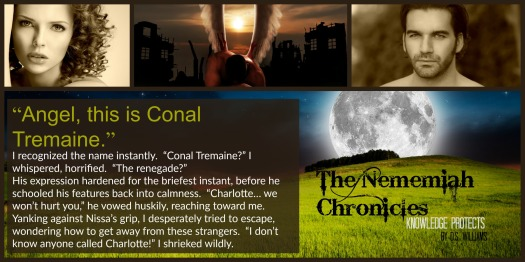 Teaser 5 - Conal Tremaine - The Renegade